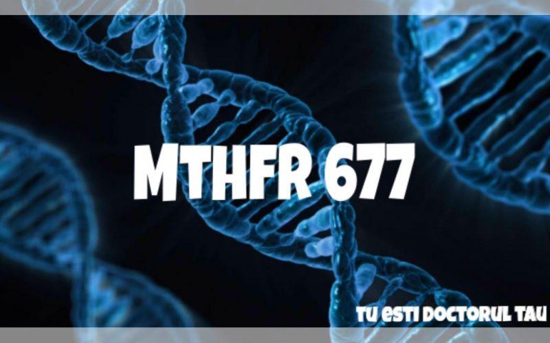 MTHFR 677, tu esti doctorul tau