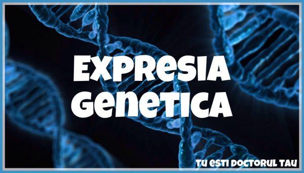 expresia genetica
