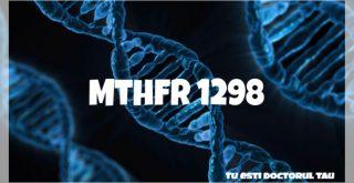 MTHFR 1298